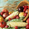 harvest-cornucopia-000007223914_Small